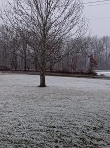 01-15-2021 Snow 02