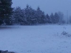 01-15-2021 Snow 04