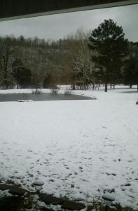 01-15-2021 Snow 10