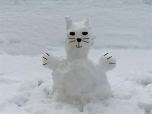 01-15-2021 Snow 11